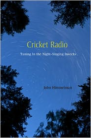 cricket radio