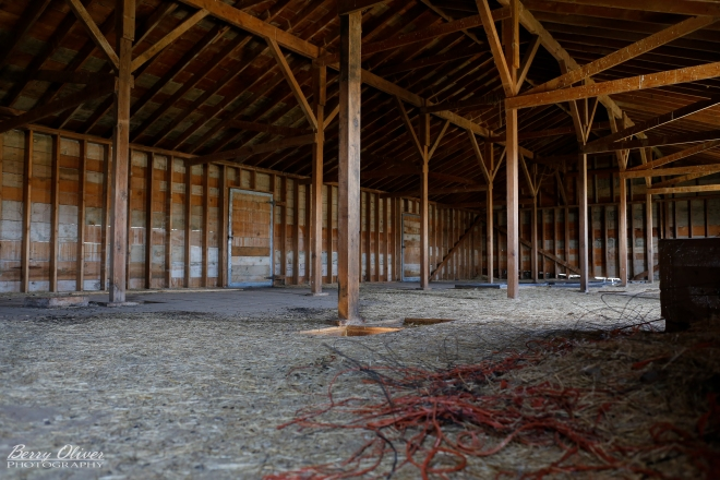 The Horse Barn's hayloft: the future home of our Western & Native American Library??