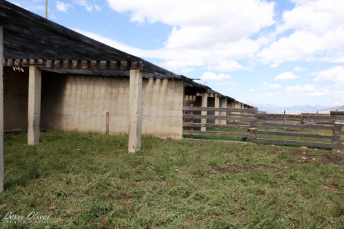 Eighteen spacious, rock-solid concrete corral stalls.