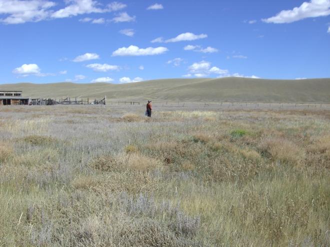 y-Kerry's field
