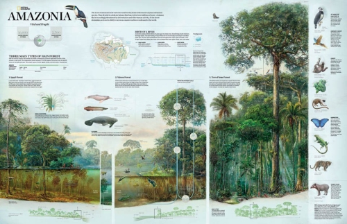 national-geographic-infographic-3