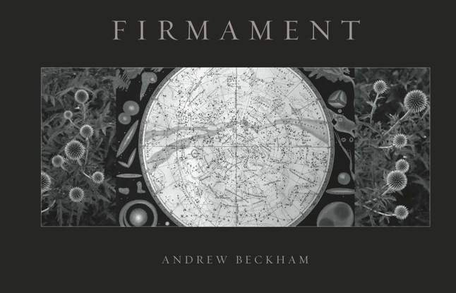 firmament-book-cover