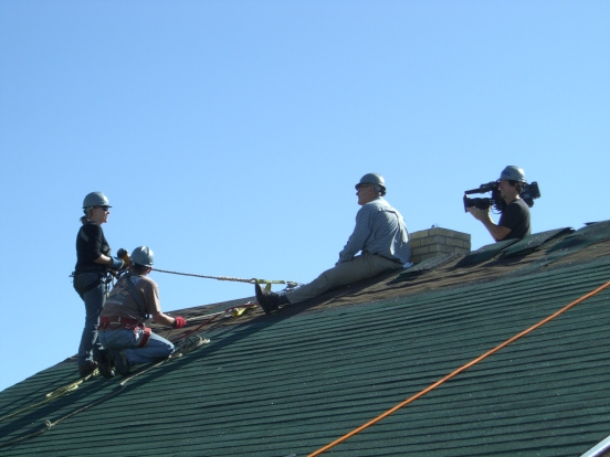 harry 3 roof